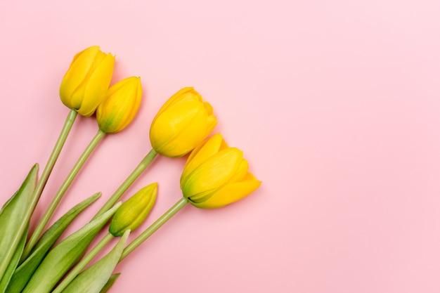 Żółty tulipan kwitnie bukiet na różowym tle