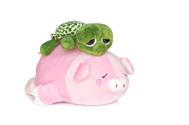 Żółw plus na plecach pluszowa świnia na białym tle