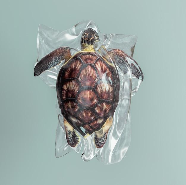 Żółw uwięziony w plastikowej torbie.