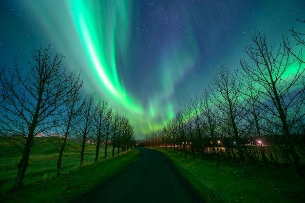 Zorza polarna (aurora borealis) na islandii