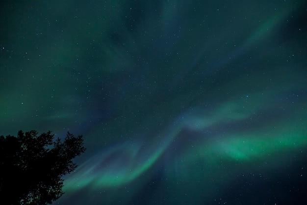 Zorza polarna w kirunie w laponii w północnej szwecji.