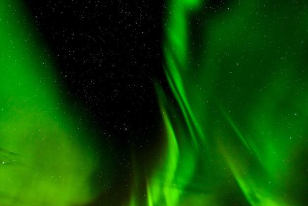 Zorzy borealis lub północni światła w lofoten, norwegia