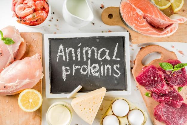 Źródła białka zwierzęcego, mięso, jaja, owoce morza, produkty mleczne