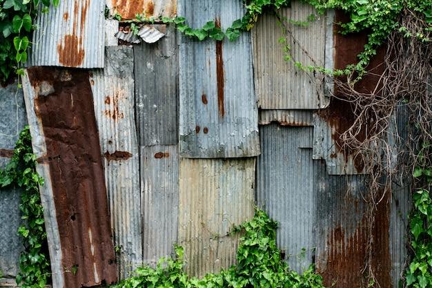 Zrudziały stary metalu prześcieradła dach z zieloną liść rośliną