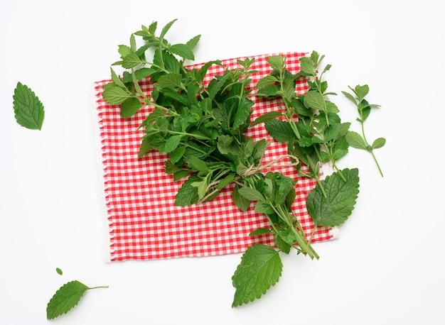 Związane łodygi świeżej mięty w pęczku na białym tle, zielone liście, widok z góry