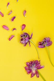 Zwiędłe kwiaty z płatkami