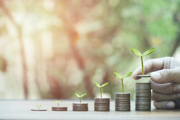 Zwiększanie liczby monet wzrostu układających się w stosy z rośliną.
