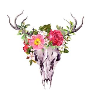 Zwierzęca czaszka jelenia z kwiatami w stylu boho. akwarela