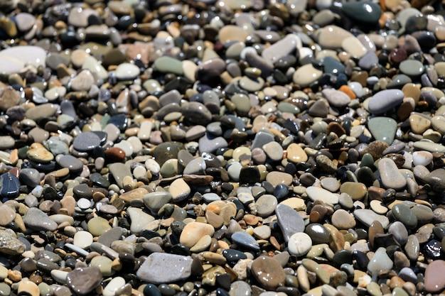 Żwirowy brzeg morza w lecie. plaża. zdjęcie wysokiej jakości