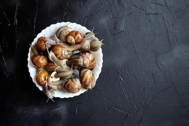 Żywe ślimaki winogronowe w białej misce na czarnym kamiennym stole
