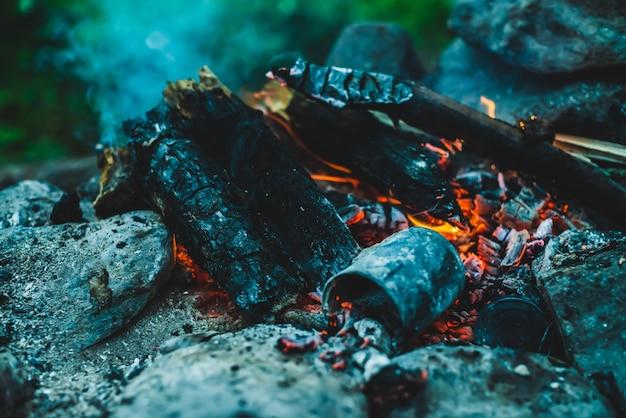Żywe tlące się drewno opałowe płonęło w ogniu