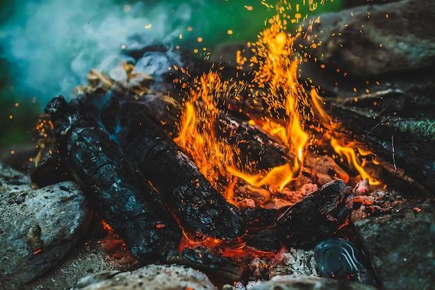 Żywe tlące się drewno opałowe płonęło w zbliżeniu.
