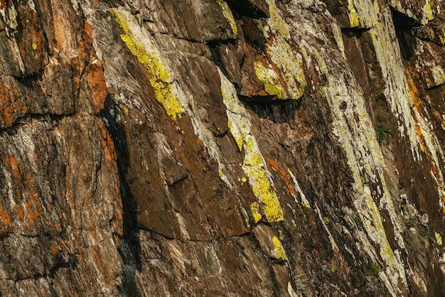 Żywy charakter tła brązowej skalistej górskiej ściany z żółtymi i pomarańczowymi porostami w słońcu. malownicze słoneczne naturalne tło wielokolorowej powierzchni skalnej. kolorowa natura tekstura pstrokata góra.