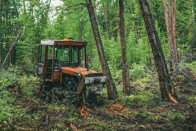 Żywy leśny krajobraz ze starym zardzewiałym czerwonym traktorem na wyrębie lasu wśród jodeł i bujnej roślinności. klimatyczna sceneria drewna z przestarzałym traktorem w lesie wśród drzew iglastych i dzikiej roślinności.