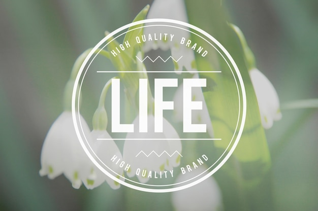 Żywy styl życia life alive balance concept