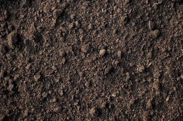 Żyzna gleba gliniasta nadaje się do sadzenia, gleby tekstury tła.