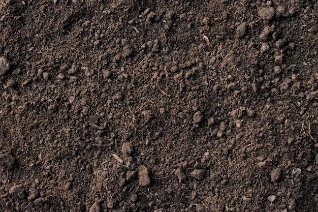 Żyzna gleba gliniasta nadaje się do sadzenia.