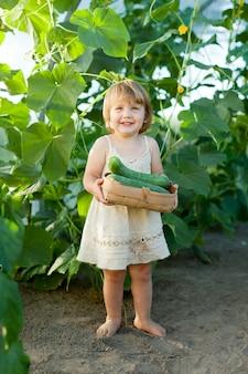 2 años niño recogiendo pepinos