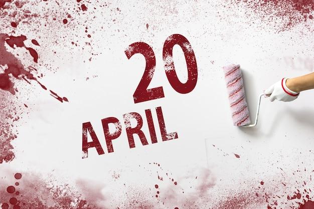 20 de abril. día 20 del mes, fecha del calendario. la mano sostiene un rodillo con pintura roja y escribe una fecha del calendario sobre un fondo blanco. mes de primavera, concepto de día del año.