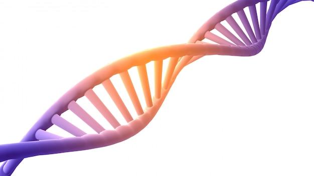 3d render estructura de adn