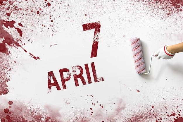 7 de abril. día 7 del mes, fecha del calendario. la mano sostiene un rodillo con pintura roja y escribe una fecha del calendario sobre un fondo blanco. mes de primavera, concepto de día del año.
