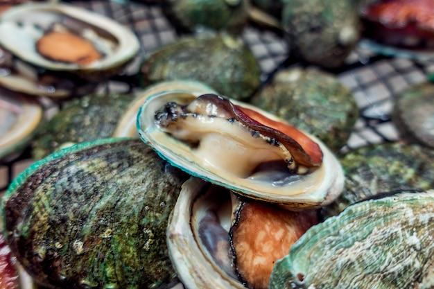 Abalones frescos en malla de alambre, en mercado de pescado de mariscos.