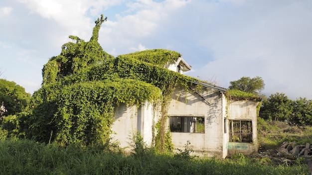 Abandonar el concepto de casa de halloween