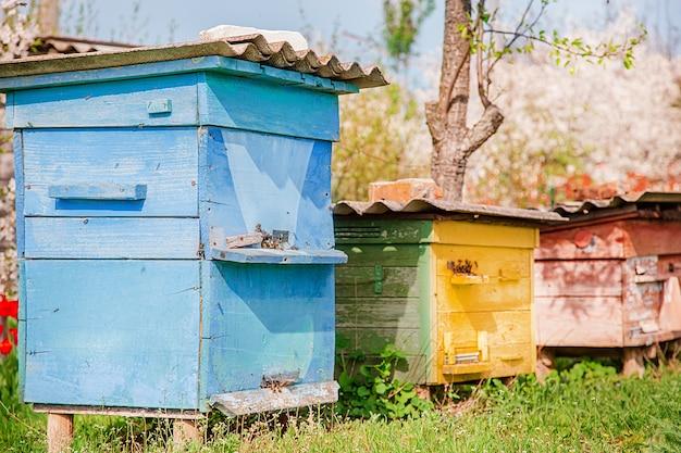 Las abejas en una vieja colmena de madera en un jardín de granja. .