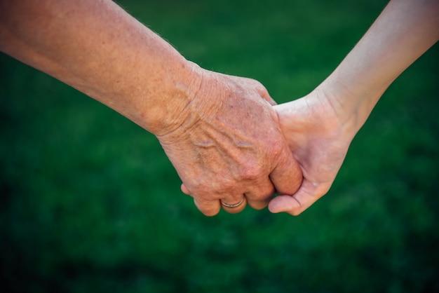 Abuela que lleva a cabo la mano del nieto en naturaleza. día nacional de los abuelos, concepto de familia. dos generaciones. la mano de la anciana y la del niño.