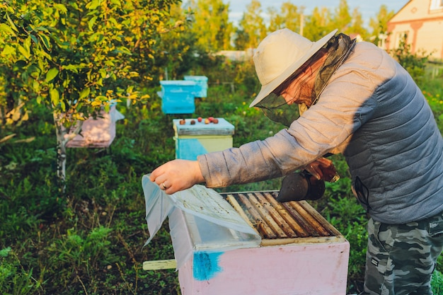 El abuelo experimentado del apicultor enseña a su nieto cuidando abejas. apicultura. el concepto de transferencia de experiencia.