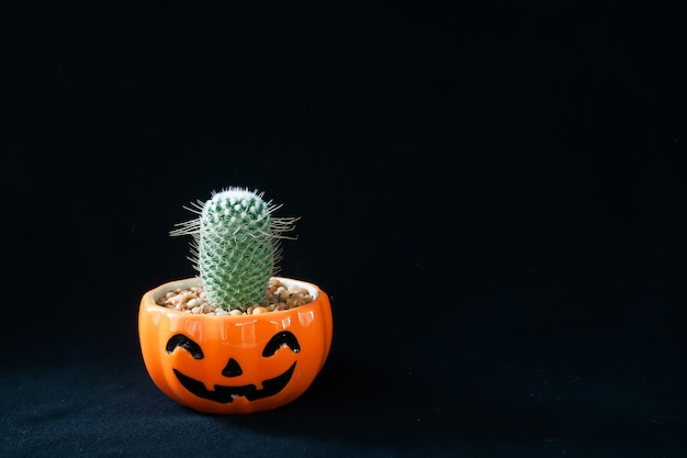 Accesorio de decoraciones feliz día de halloween concepto de fondo con planta de cactus