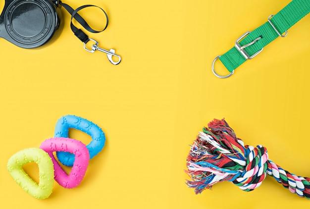 Accesorios para mascotas sobre fondo amarillo.