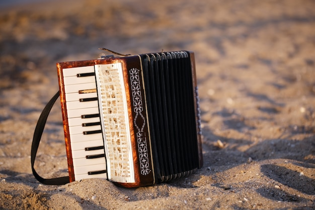 Accordian en una playa de arena