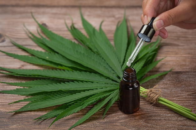 Aceite de cáñamo y hojas de cáñamo colocadas sobre el piso de madera
