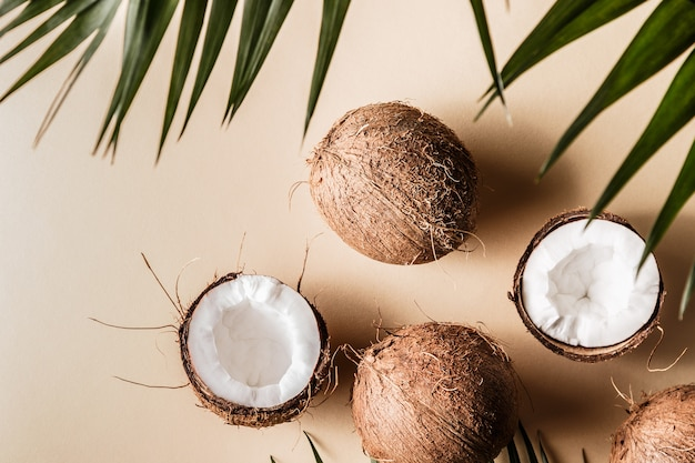Aceite de coco y cocos con hojas tropicales.