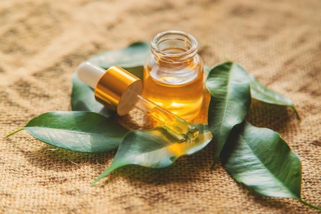 Aceite esencial de árbol de té en una botella pequeña. enfoque selectivo.