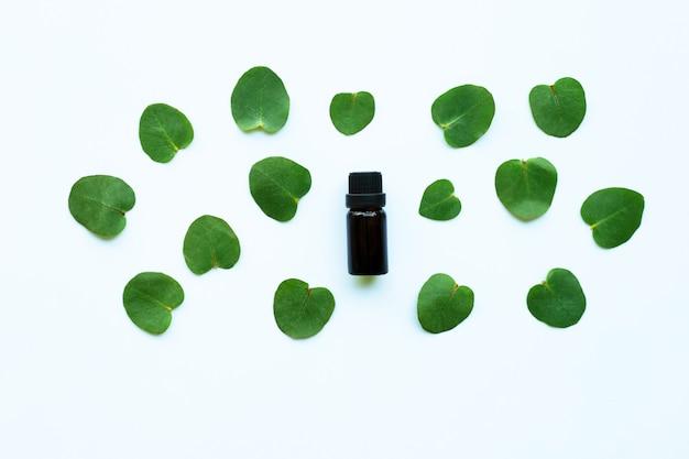 Aceite esencial de eucalipto en blanco.
