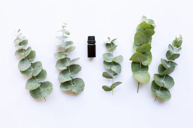 Aceite esencial de eucalipto.