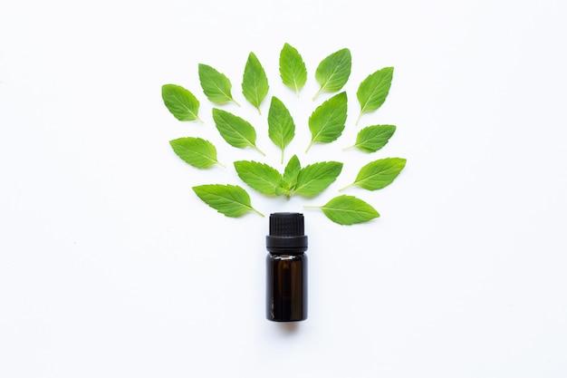 Aceite esencial con hojas de menta fresca en blanco.