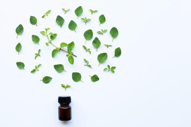 Aceite esencial con hojas de orégano fresco en blanco.