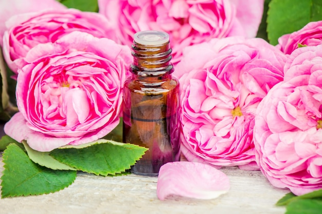 Aceite esencial de rosa sobre un fondo claro. enfoque selectivo