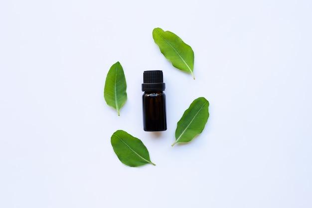 Aceites esenciales de aromaterapia de eucalipto en botella.
