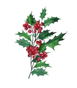 Acuarela con acebo de planta navideña