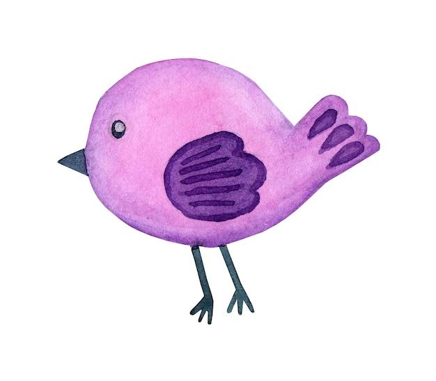 Acuarela, garabato, lila, pájaro, estilo de dibujos animados, caricatura, lindo, pájaro, colorido, elemento decorativo