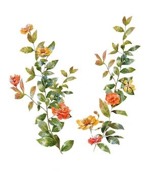 Acuarela de hojas y flores, en blanco