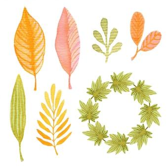 Acuarela otoño conjunto con hojas y marco. decoración para diseño de paquete o tarjeta de invitación.