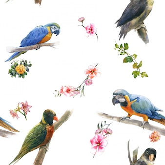 Acuarela con pájaros y flores, patrón transparente sobre fondo blanco.