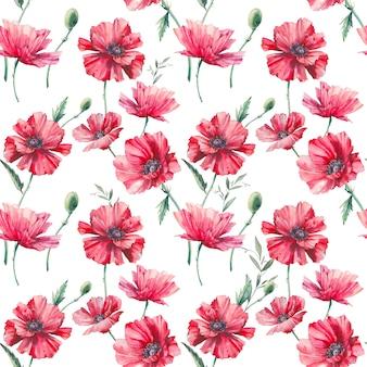 Acuarela de patrones sin fisuras amapola. pintado a mano repitiendo fondo con elementos florales sobre fondo blanco. textura botánica