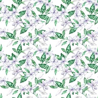 Acuarela de patrones sin fisuras con flores de café con leche y hojas verdes.