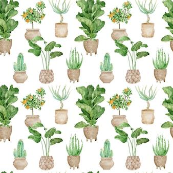 Acuarela de patrones sin fisuras de plantas tropicales en macetas y cactus